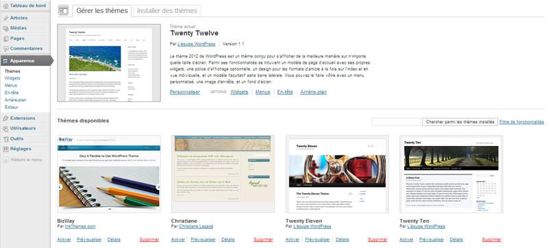 Aperçu des thèmes dans le tableau de bord WordPress