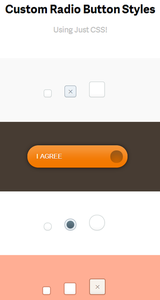 Outils de l'intégrateur - Custom Radio Button Styles
