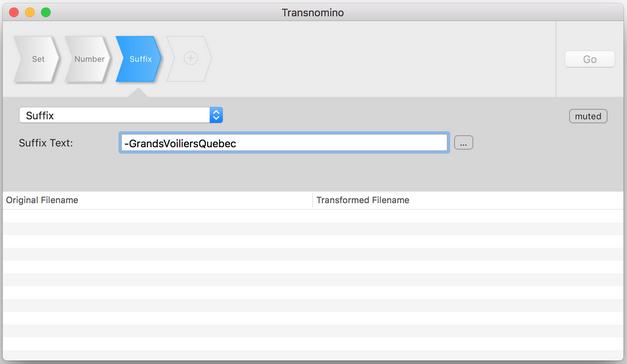Transnomino - étape 3